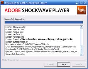 shockwave player windows